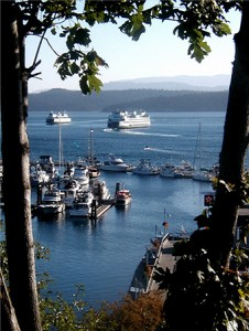 Ferries come and go at the entrance to Friday Harbor on San Juan Island, headquarters of killer- whale viewing expeditions. -- Cecil Scaglione photo