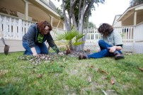 Victoria Fillpot, and Kathy Sampson cleaning leaves from under a tree at Project OZ, in Oceanside