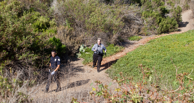 Investigators navigate the heavy brush surrounding the transient camp where the stabbings took place