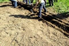 Agricultura ecolóxica para festexar o Día da Terra