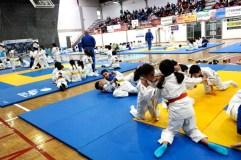 O Barco acolle a festa do judo infantil