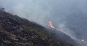 Extinguido o incendio de Sobrado (Trives)