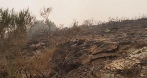 Na pasada fin de semana ardían en Galicia 35.500 hectáreas