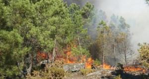 Vaga de lumes na provincia de Ourense