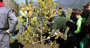 A Rúa dá a benvida á primavera cunha nova plantación no Día Mundial da Árbore