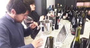 Os viños valdeorreses, no Salón dos Mellores Viños de España en Madrid