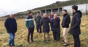 O conselleiro do Medio Rural visita a explotación de vacún en extensivo da CMVMC de Coba (Trives)