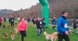 Os propietarios de mascotas de Ourense teñen unha cita este domingo no III Canicross