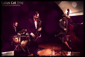Caius Cat Trio @ Lancy