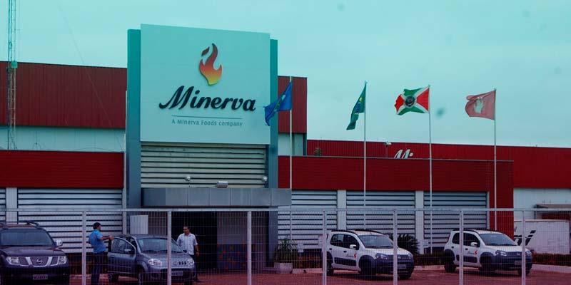 Os Melhores Investimentos - Ações da Minerva Foods