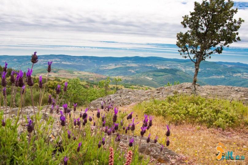 Parque Natural de Montesinho, alto de Ciradelha