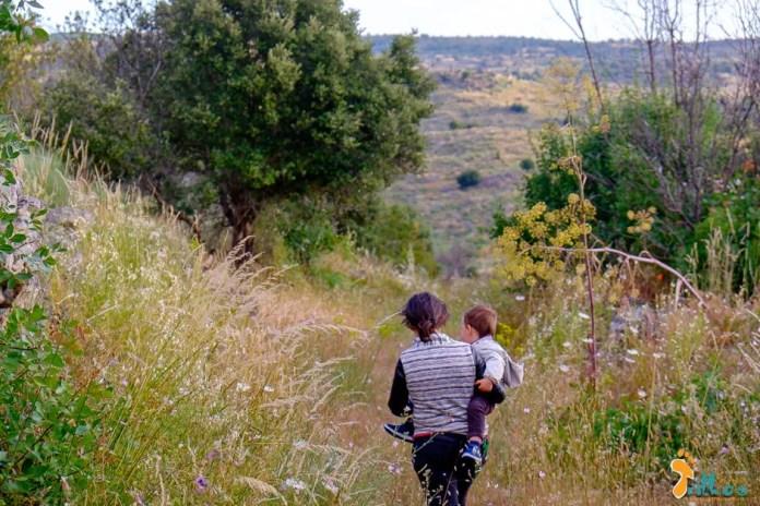 O caminho florido, no Bogalhal Velho, em Pinhel