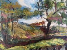Over the wall Plas Yn Rhiw 30x23cm - SARAH NESBITT