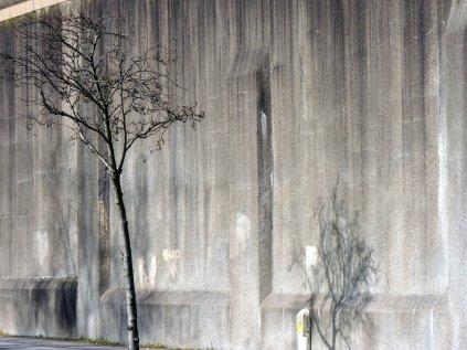 Maria Kidulis - Prison Wall Trees-1