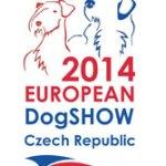 Крупнейшие международные выставки собак, проводимые в  2014-2017 годах