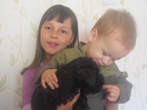 Собака в доме. А что поменялось в отношениях между детьми?