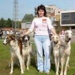 Питомник борзых «Пермь Великая»
