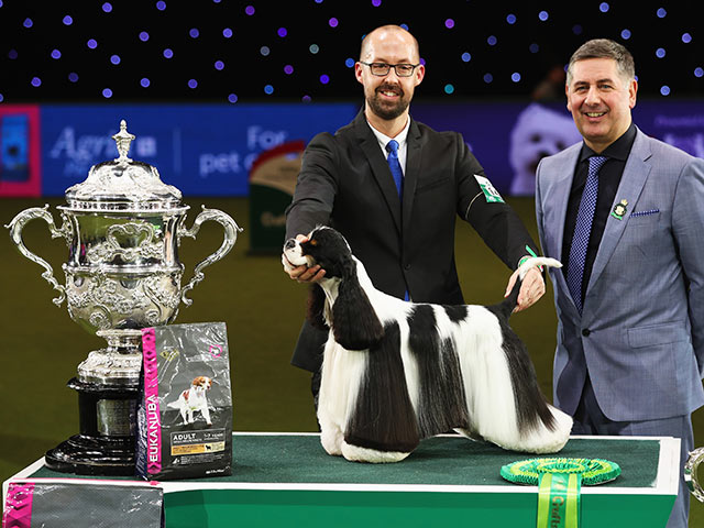 Crufts Dog Show 2017