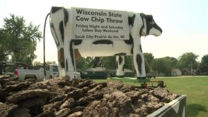 wi+cow+chip+throw