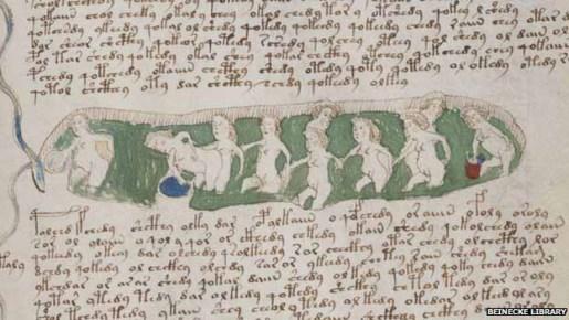 voynich_manuscript613c