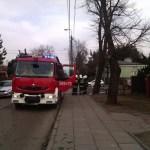 Interwencja - pożar drzewa al. Piłsudskiego zd2