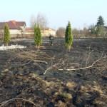 Interwencja pożar trawy regulska zd4