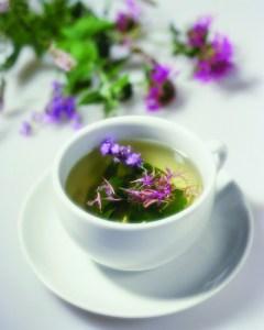 Flowers Floating in Herbal Tea