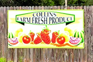 Strawberry_collins produce