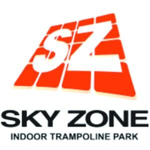 Skyzonelogo