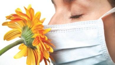 Photo of برد.. حساسية.. أم إنفلونزا؟!