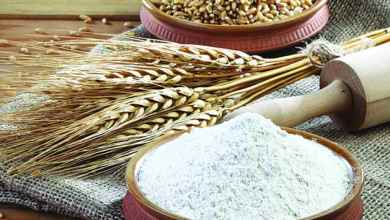 Photo of الفوائد الغذائية والصحية لمجموعة الحبوب (1 – 2) القمح.. غني الأملاح وفير الطاقة