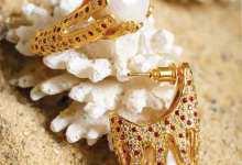 Photo of مجموعة العيد الصيفية.. أزياء الأمــــــــــــل ومجوهرات الحياة تواجه «كورونا»Roqaya's Rocks
