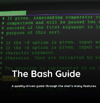 The Bash Guide
