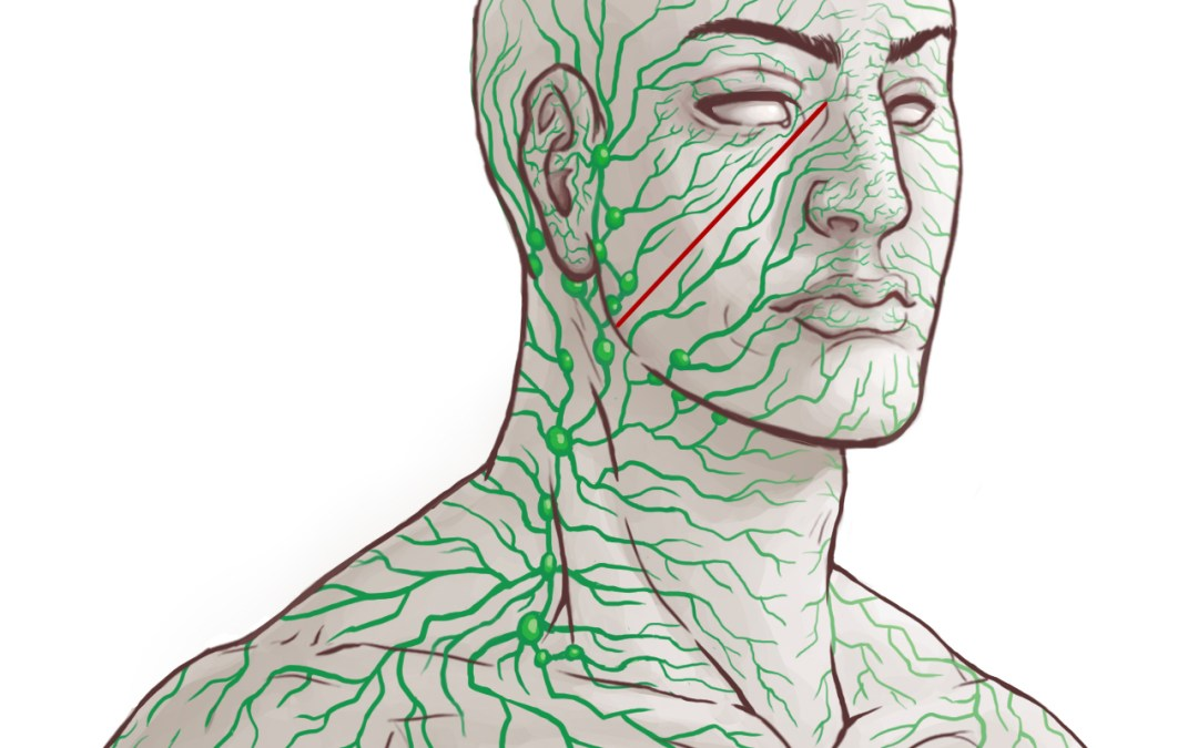 Activate Lymphatic System to Reduce Inflammation