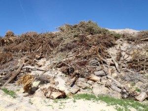 Landscape debris