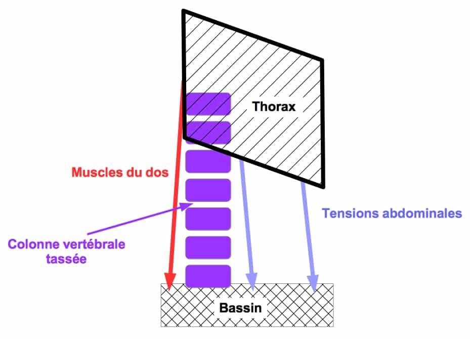 tensions-abdominales-presentes