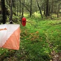 Post i skogen Grankvistløpet 2018