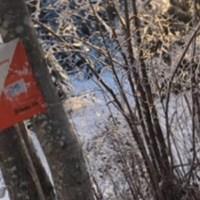 Skijegern post i Østmarka