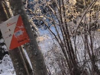 Permalink to: Prøv Skijegern i Østmarka!
