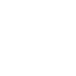 Phone and social media icon