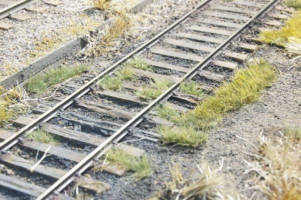 Weedy track