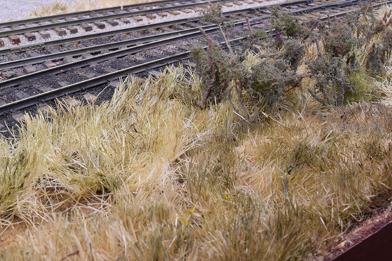 Wild grasses also need to cover a lot of ground.