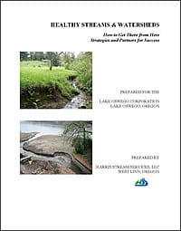 Healthy Streams and Watersheds - How to Get There from Here, Strategies and Partners for Success