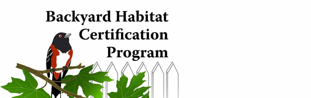 Making Connections – The Lake Oswego Backyard Habitat Program