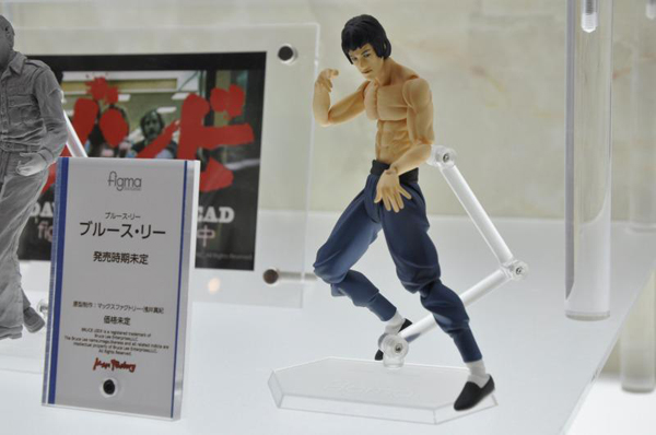 Wonfes 2013 Winter Coverage (14)