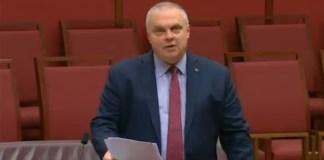 Senador australiano contra anime fala sobre Sword Art Online, Goblin Slayer e No Game No Life no parlamento