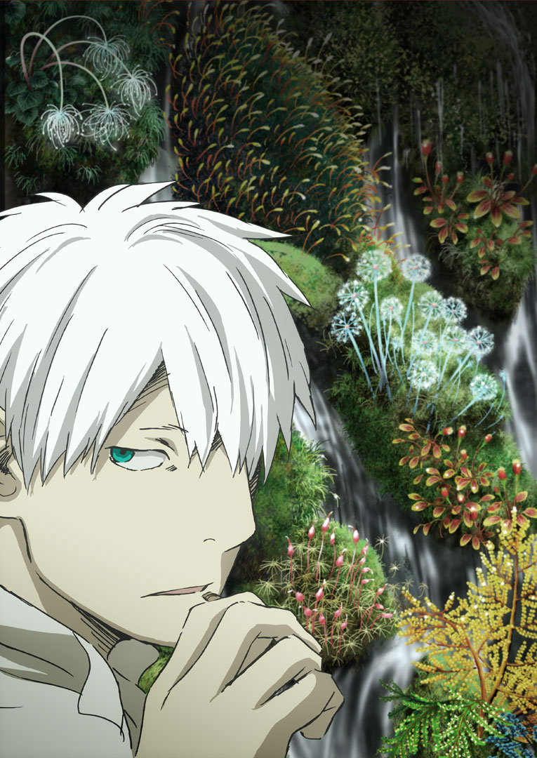 Mushishi-Zoku-Shou-Season-2-Visual
