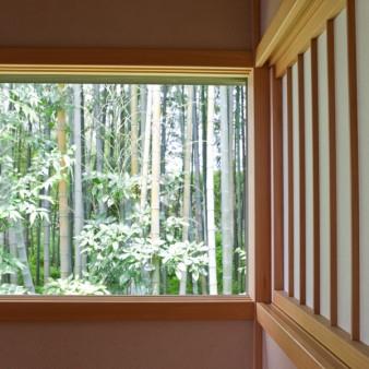 19:書斎 開口部より竹林を見る。