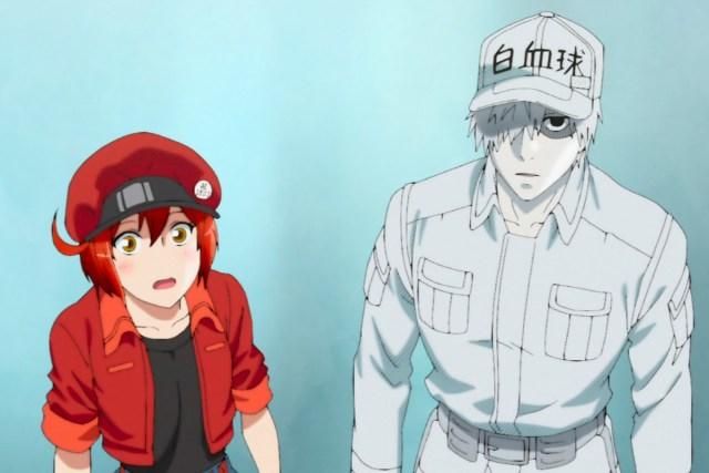Cells at Work! Anime Screenshot