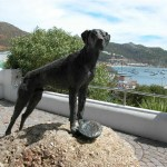 final_capepoint_simonstown